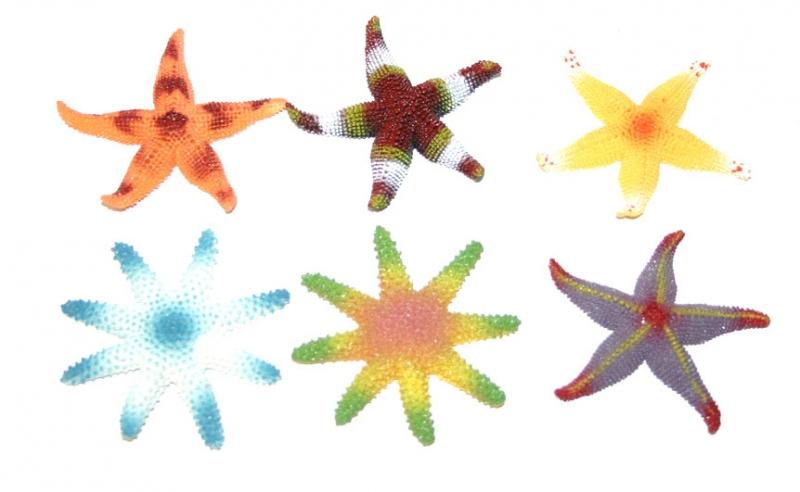 Zvieratá hviezdice morské, 6 ks v sáčku