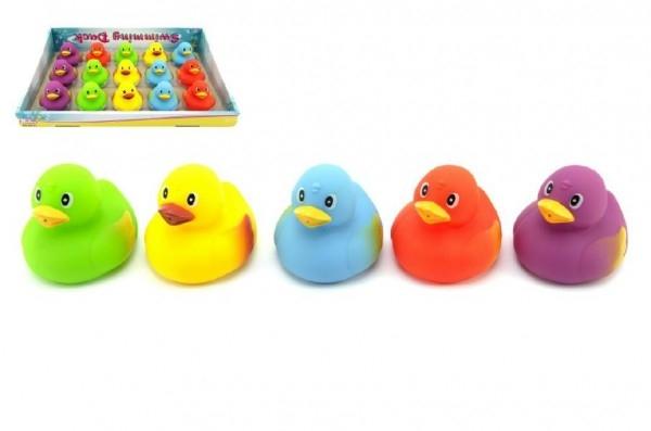Plávacia kačička gumová 7,5cm asst 5 farieb 15ks v boxe 18m +