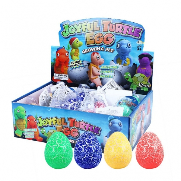Rappa Korytnačka rastúce vo vajci